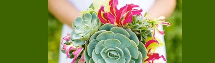 Ramos de novia originales con plantas suculentas.