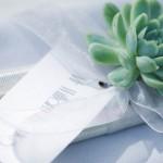 Suculentas ramo de novia 11