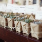 regalos para invitados de boda plantas
