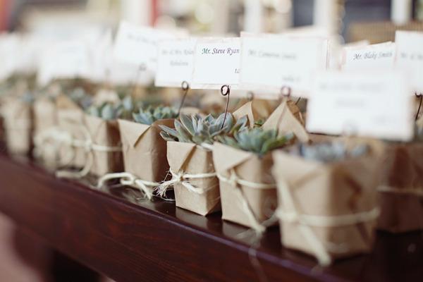 Plantas y semillas como regalo para invitados de boda for Ideas para regalos de boda