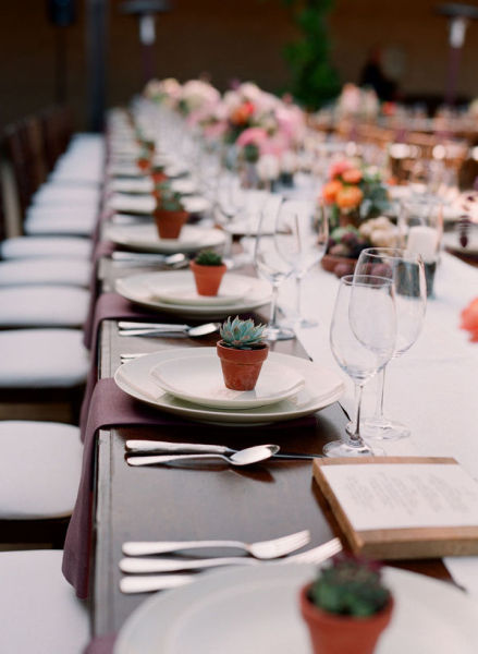 Plantas y semillas como regalo para invitados de boda for Obsequios boda