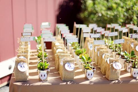 Plantas Y Semillas Como Regalo Para Invitados De Boda