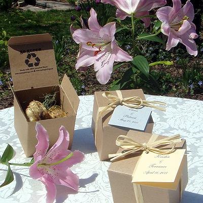 Plantas y semillas como regalo para invitados de boda invitaciones y detalles originales - Regalos de boda para invitados ...