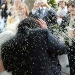 wedding_rice