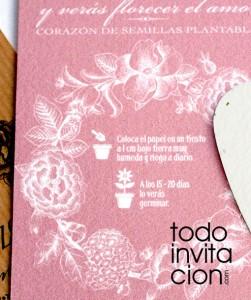 papel de semillas plantable para detalle de invitados boda bautizo comunion