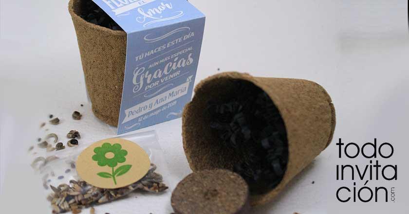 kit de semillas personalizadas para bodas