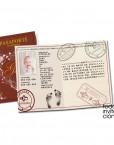 recodatorio-de-bautizo-original-pasaporte-1